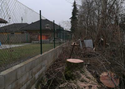 Kácení olší a jasanů nad plotem a domem